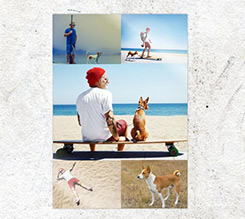 Poster Collage 5 Riquadri