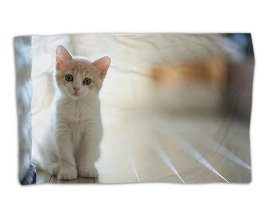 animali su coperte personalizzate - fotoregali
